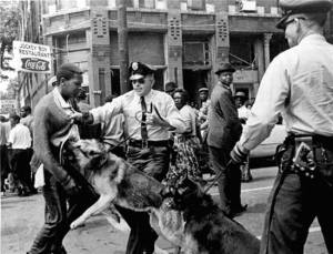 civil rights dog attack